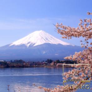Почему Япония?  - ЯпЭкс - Реализация Японской спецтехники на российском рынке. Покупка с аукционов Японии под Ваш заказ.